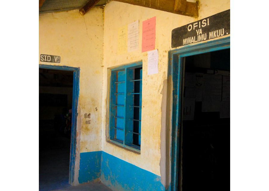 Primary schools in Dar es salaam: Overcrowded and without sufficient text books