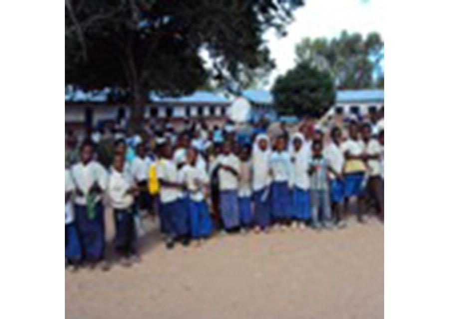 Shule za Msingi mkoani Dar es Salaam